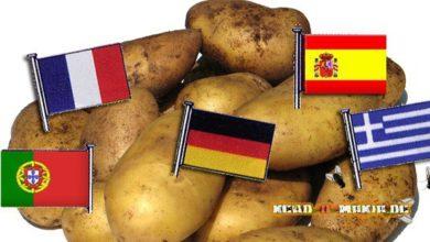 Bild von Griechenland ist eine Kartoffel!..